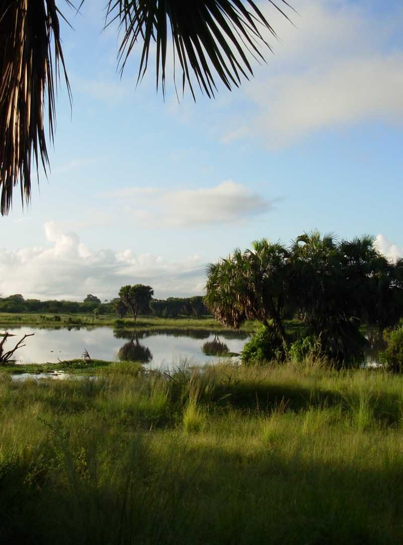 Hotel Selous – LAKE MANZE CAMP