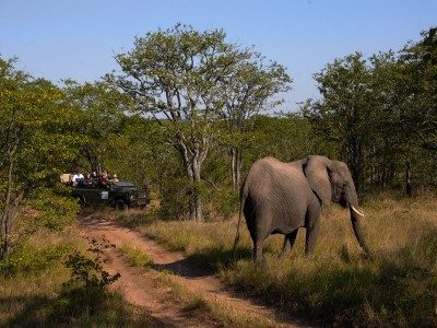 KRUGER TO VICTORIA FALLS ADVENTURE NORTH Crossland plus – (Cod. KF)