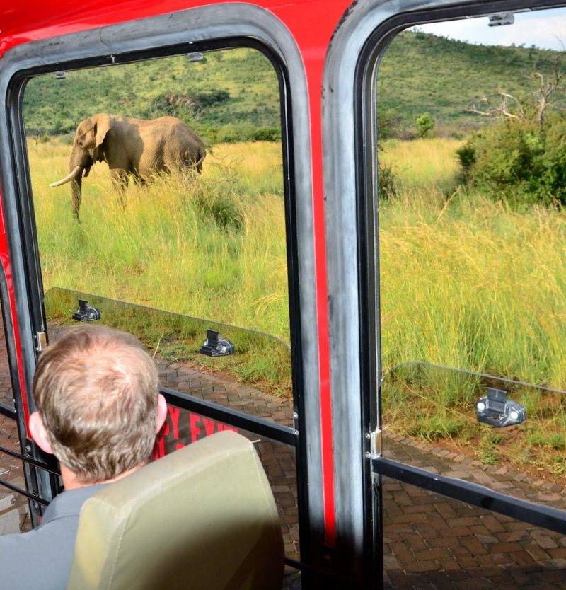 SMALL TOURS GROUP – South Africa Rainbow Route