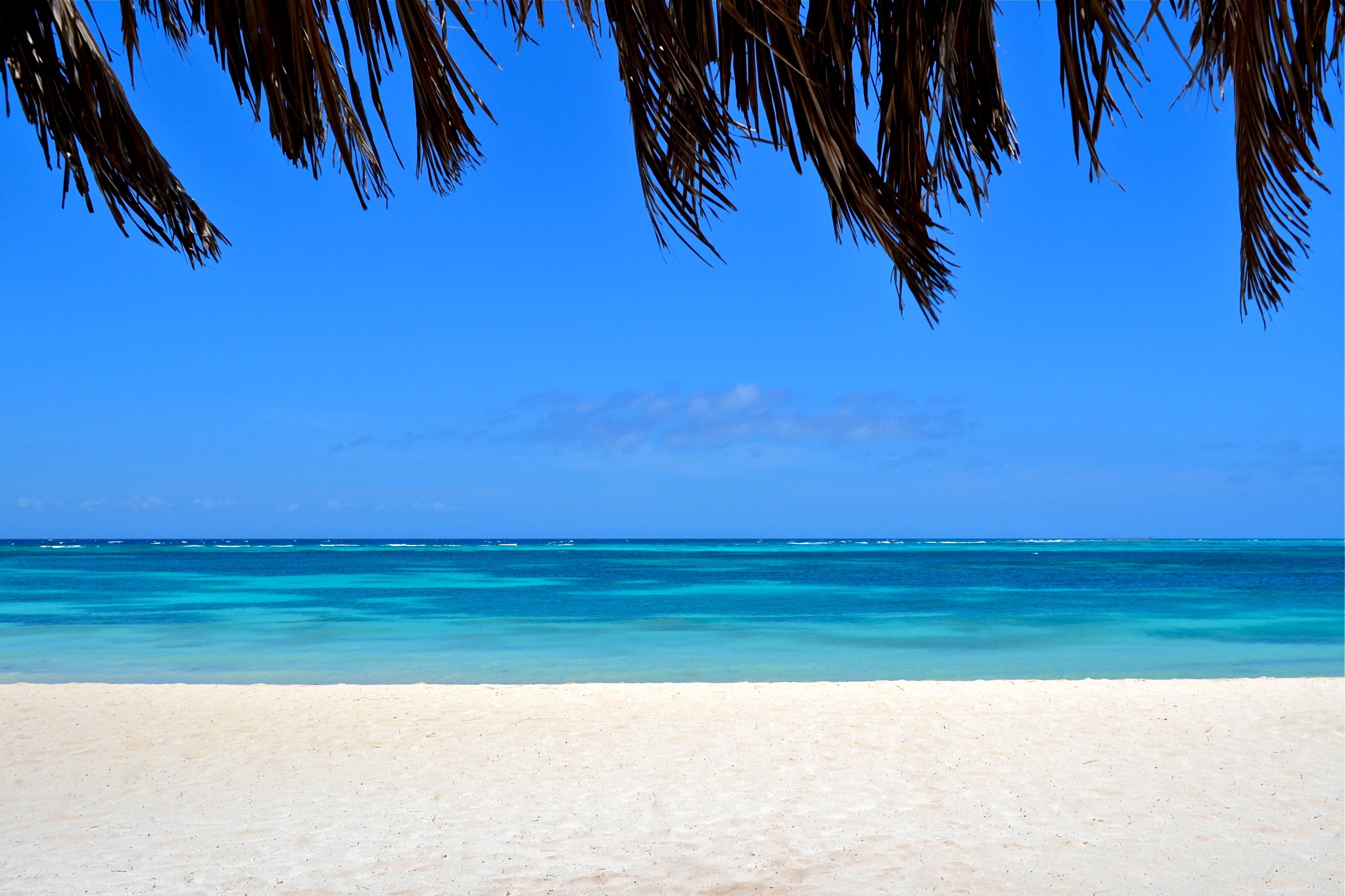 beach_view_from_under_palapa